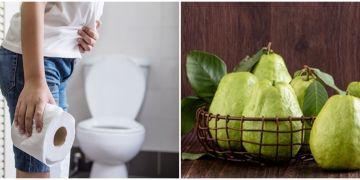 7 Tanaman obat diare, alami, ampuh, dan mudah dibuat