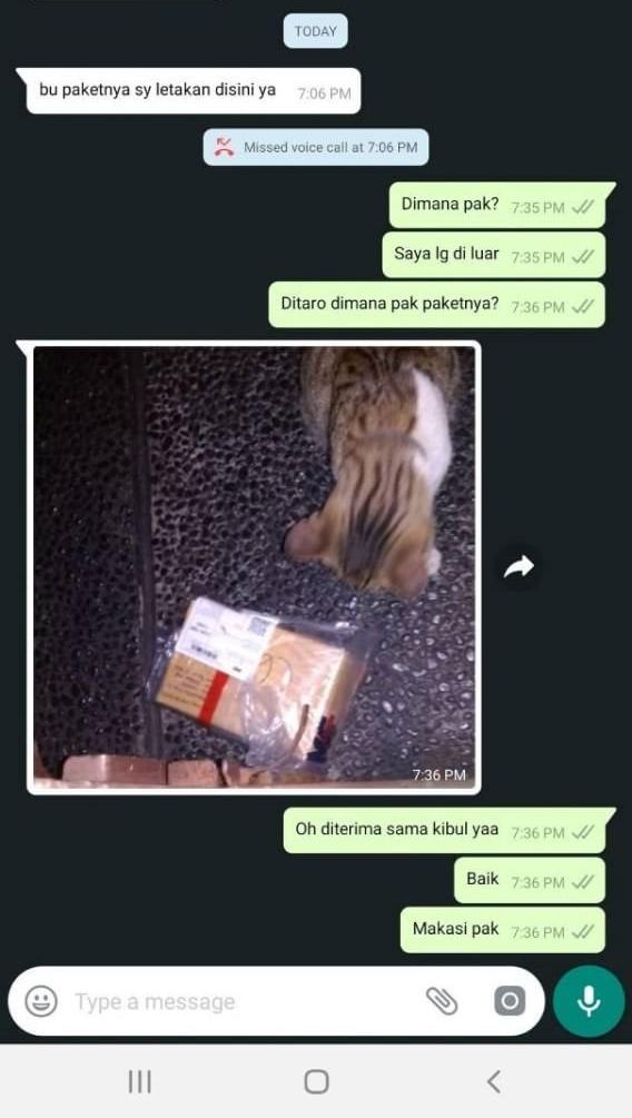 Chat foto penerima paket © berbagai sumber