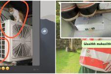 10 Chat foto penerima paket dari kurir, bikin nyengir tepuk jidat
