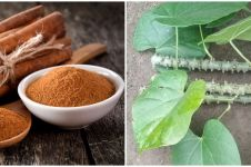 6 Tanaman obat dari batang dan khasiatnya untuk kesehatan
