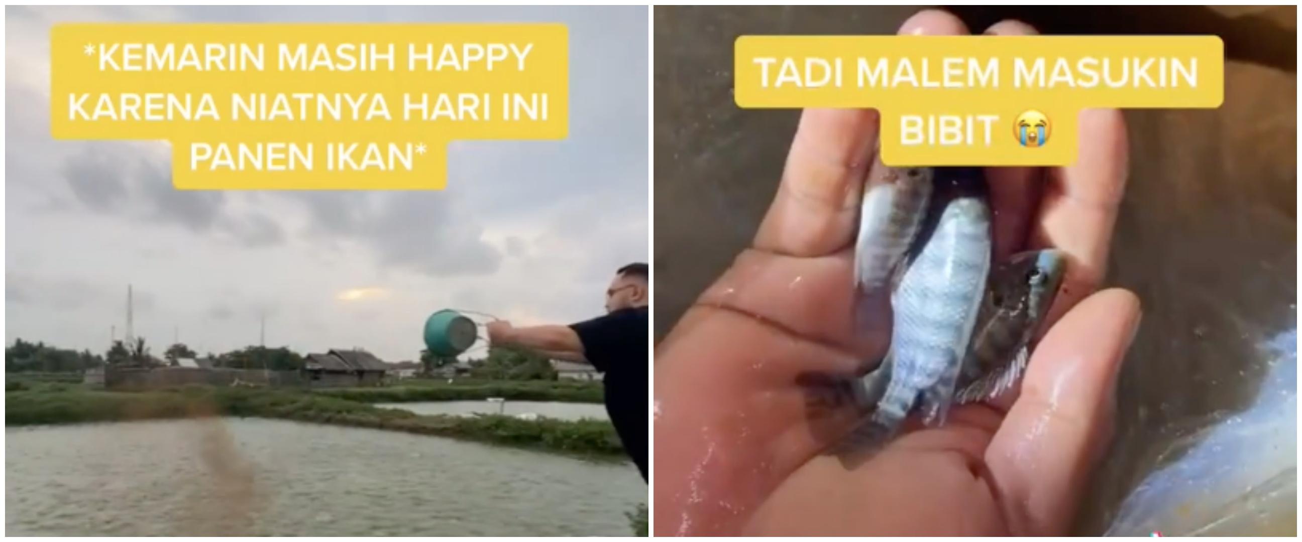 Kisah miris keluarga petambak ikan gagal panen karena banjir
