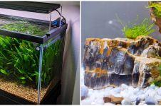 10 Tanaman hidroponik akuarium, rumah makin cantik dan asri
