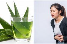9 Manfaat tanaman obat lidah buaya untuk kesehatan