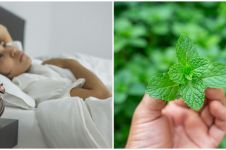 10 Tanaman obat mampu mengatasi insomnia, mudah didapat