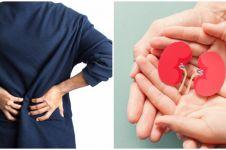 Tanaman obat infeksi ginjal, mudah didapat dan bekerja dengan cepat