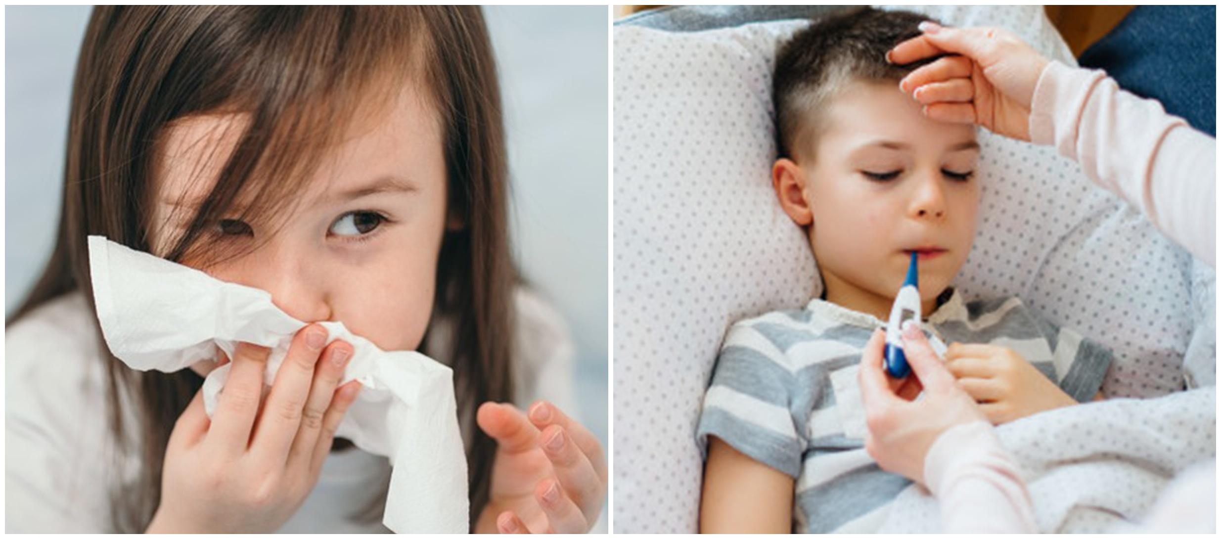 Tanaman obat flu untuk anak, ampuh atasi peradangan dan aman