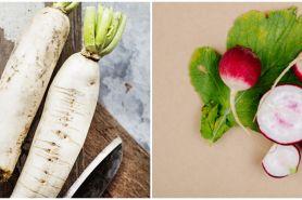 Cara menanam lobak hidroponik, lengkap dengan perawatannya