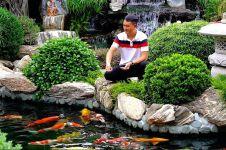 3 Tips merawat kolam ikan hias agar selalu bersih dan bebas bocor