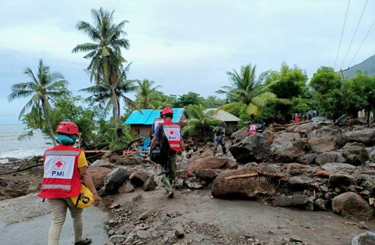 10 Potret terkini dampak bencana alam di NTT