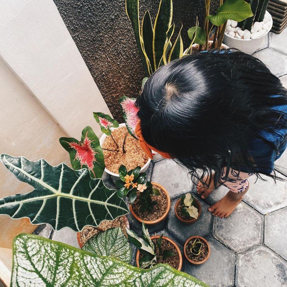 penampakan rumah ricky harun © berbagai sumber