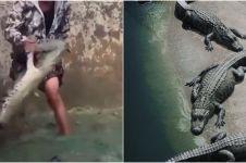 Viral pemuda nyemplung kolam buaya dengan santai, bikin ngeri