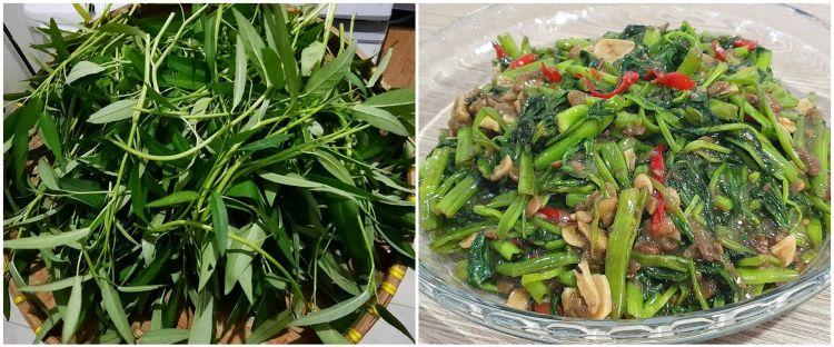 Mitos atau fakta, makan kangkung bisa bikin cepat ngantuk?