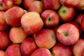 9 Resep minuman apel cocok untuk sahur, segar dan bisa kurangi kantuk