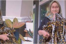 Viral video wanita gendong puluhan ular, ditonton hampir 18 juta kali