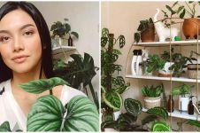 9 Penampakan kebun dalam rumah Angela Gilsha, asri dan bikin nyaman
