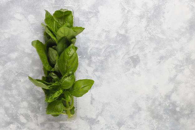 Manfaat daun basil untuk kesehatan © freepik.com