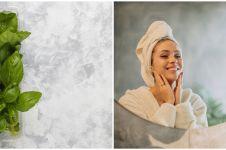 5 Manfaat daun basil untuk kesehatan, bisa mencegah kerutan