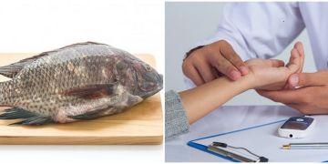 5 Manfaat ikan mujair, dapat mengontrol kolesterol