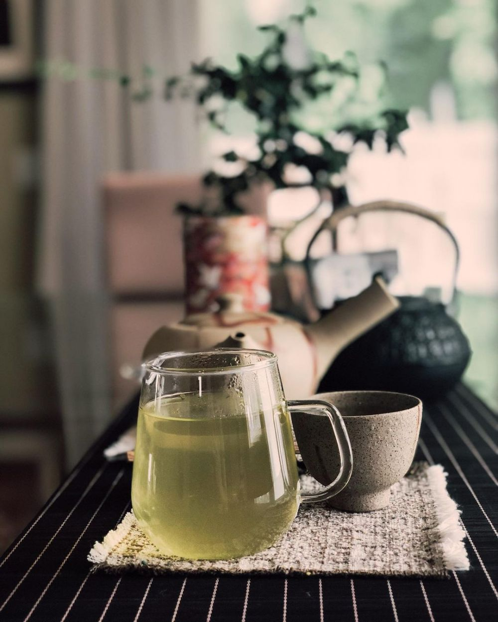 Jenis teh hijau beserta manfaatnya untuk kesehatan © berbagai sumber