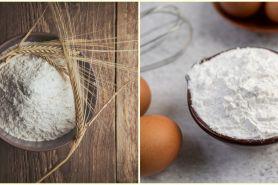 Sering tertukar, ini beda tepung terigu, tapioka, maizena, dan sagu