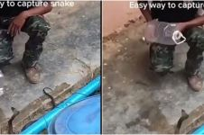 Viral video orang tangkap ular dengan botol, bikin tegang