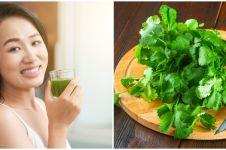 10 Manfaat daun ketumbar bagi kesehatan, bisa detoks racun