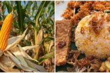 10 Manfaat nasi jagung untuk kesehatan, menyehatkan mata
