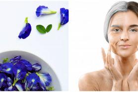 10 Manfaat bunga telang untuk kecantikan, mencegah penuaan dini