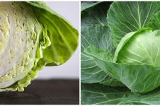 9 Manfaat kubis untuk kesehatan, bantu turunkan kadar kolesterol