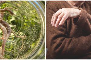 7 Manfaat mengonsumsi akar pepaya, bisa atasi rematik