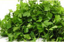 8 Manfaat parsley untuk kesehatan, menjaga tulang