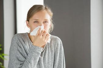 Manfaat temu putih untuk kecantikan dan kesehatan freepik.com