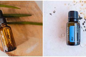 9 Manfaat tea tree oil untuk kecantikan, ampuh atasi jerawat