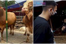 11 Momen Raffi Ahmad beli hewan kurban, ada yang beratnya 1,3 ton