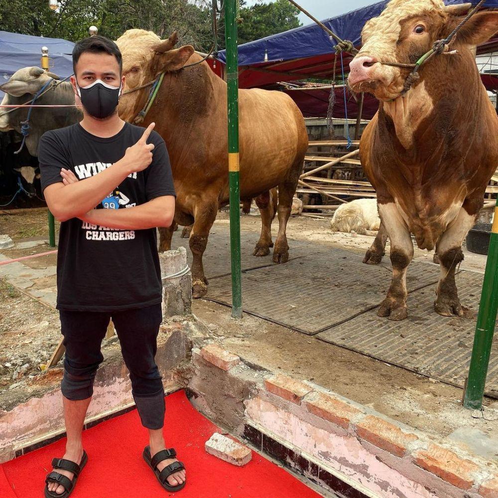seleb berburu hewan kurban © 2021 brilio.net