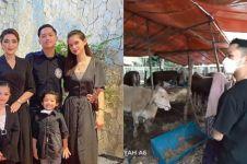 11 Momen keluarga Anang beli 3 sapi kurban, beratnya di atas 1 ton