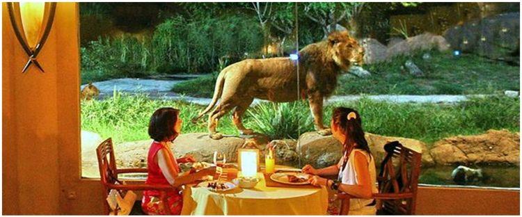 9 Restoran ini beri sensasi makan bareng hewan, bak di alam liar