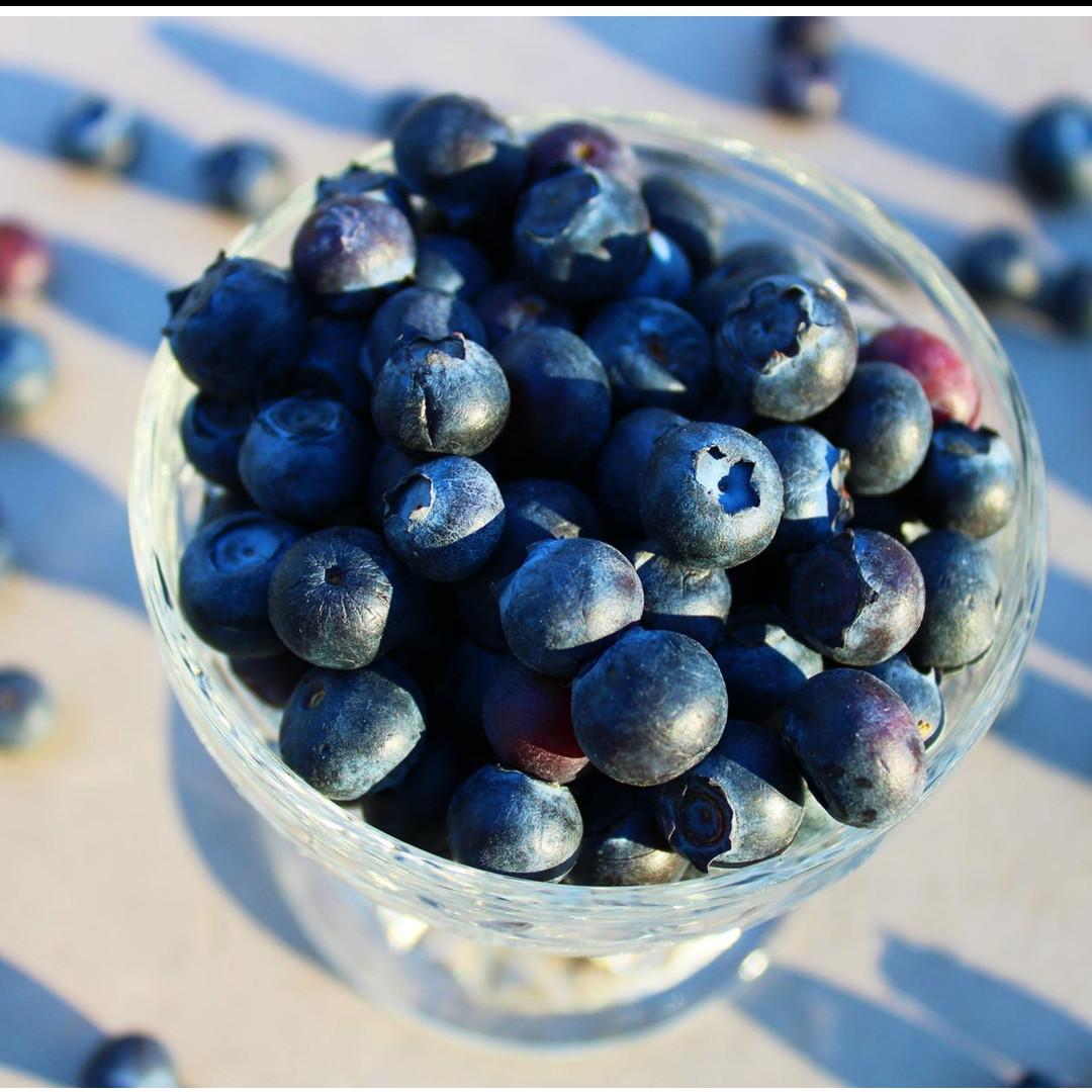 17 Manfaat blueberry untuk kesehatan dan kecantikan