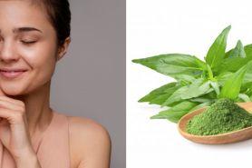 8 Manfaat daun sambiloto untuk kecantikan, serta cara penggunaannya