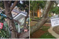 11 Pengumuman lucu di pohon ini absurdnya bikin melongo