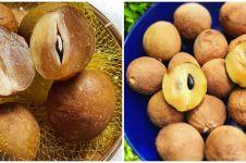 12 Manfaat buah sawo bagi kesehatan, baik untuk ibu hamil