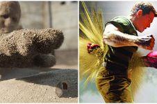 Muncul karena badai pasir, ini 9 fakta menarik Sandman di Spider-Man