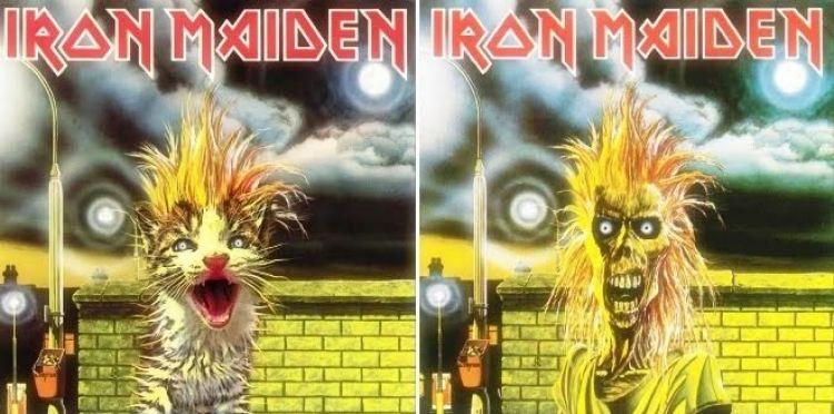 21 Artwork album musik ini diedit jadi gambar kucing, malah jadi lucu!