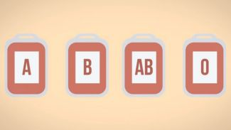 Kenapa Golongan Darah Manusia Berbeda-Beda? Inilah Jawabannya