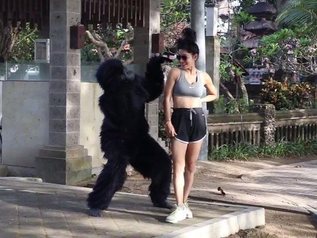 Gorilla prank Yudist Ardhana © 2016 famous.id
