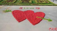 5 Cara Melamar Paling Romantis di Dunia