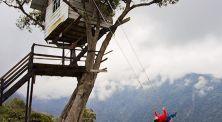 6 Rumah Pohon Paling Unik dan Menarik yang Ada di Dunia