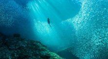 Heboh! Inilah 7 Misteri Besar yang Tersembunyi di Dasar Samudra