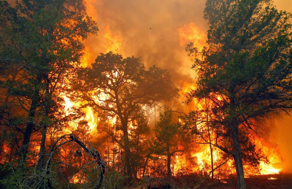 Kebakaran Hutan Chelan , Oregon