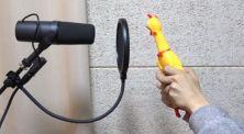 """Kreatif! Mainan Ayam Menyanyikan Lagu """"Havana"""" Milik Camila Cabello"""